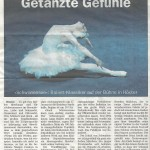 Schwanensee Höxter